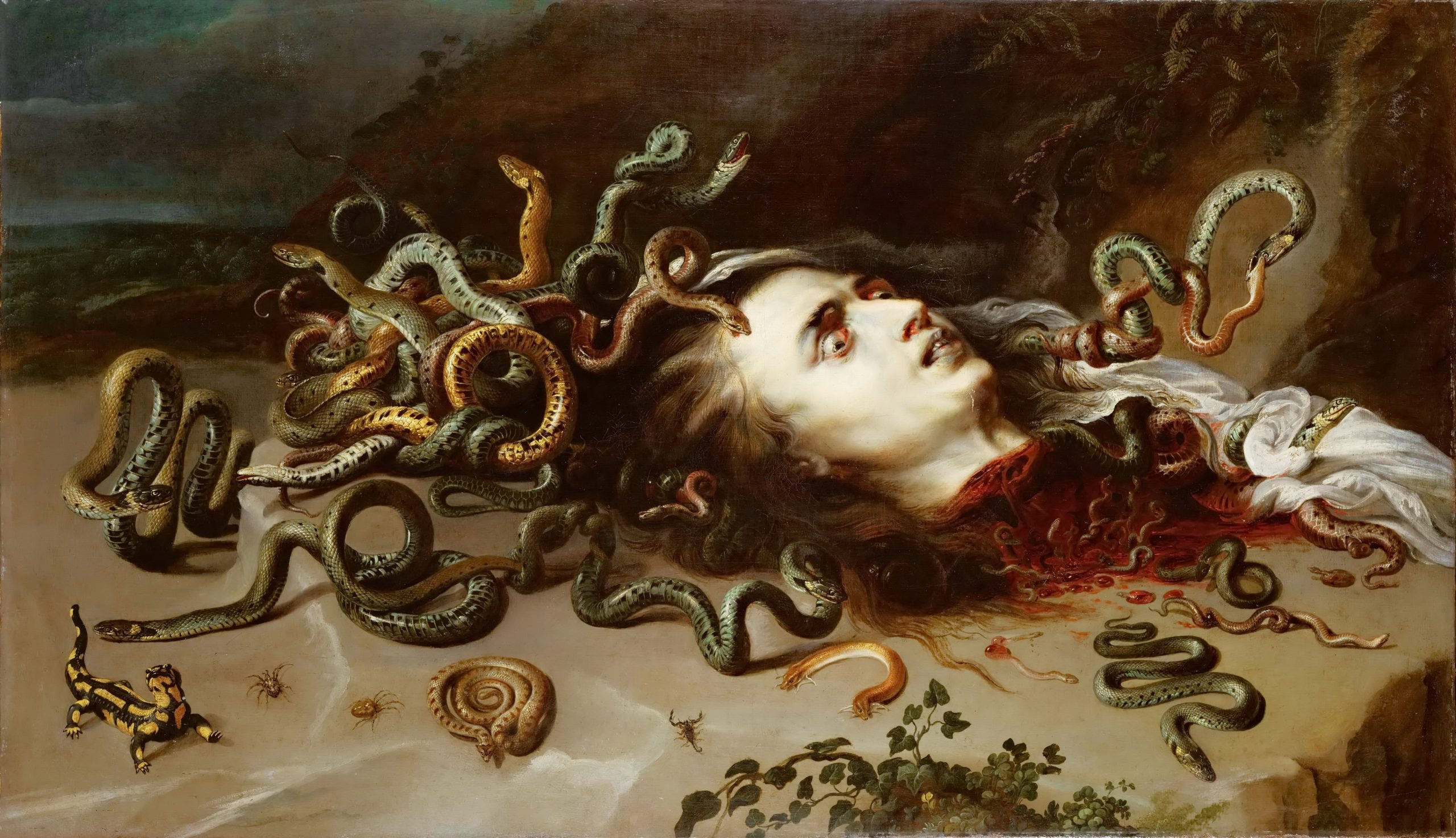 Head of Medusa: :Peter Paul Rubens and Attributed to Frans Snyders
