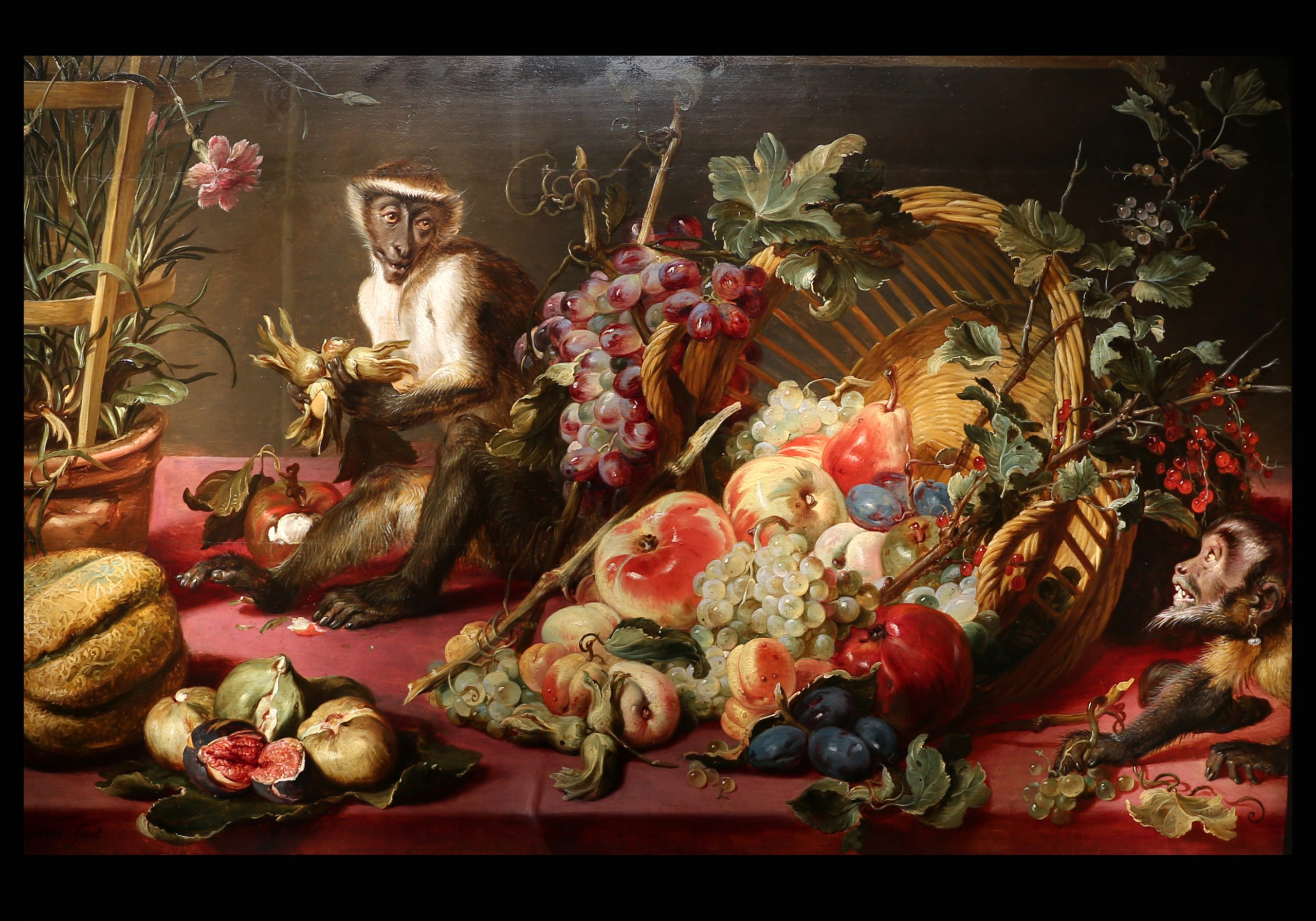 Still Life with Monkeys. Frans Snyders, 1630 - 1640,  National Gallery Prague